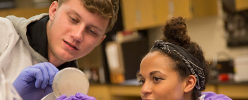 Detroit Mercy ranks in top 20% of U.S. universities in Wall Street Journal's/THE 2020 rankings